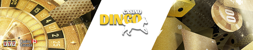 bannière dingo casino
