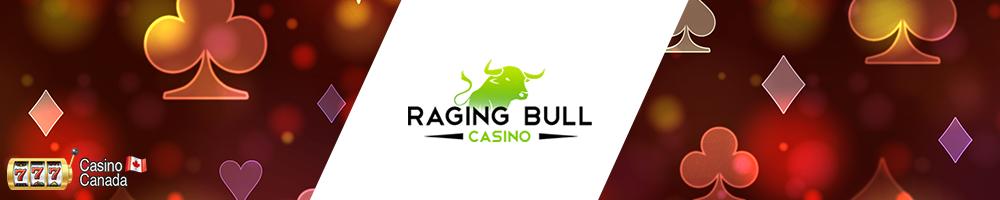 bannière raging bull slots