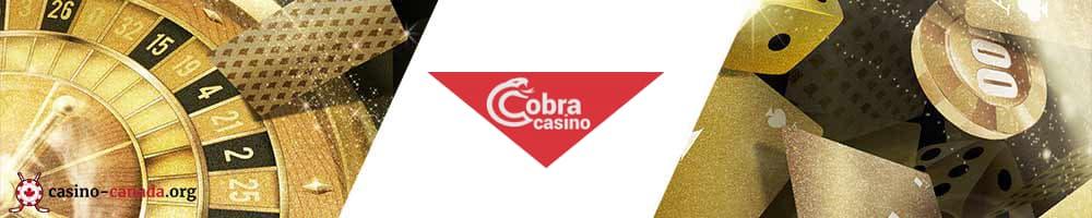 banner cobra casino